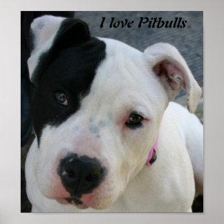 Amo el poster de Pitbulls