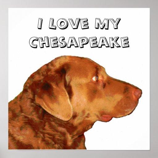 Amo el poster del Chesapeake