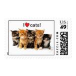 Amo el sello de los gatos
