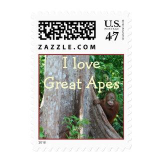Amo el sello de los grandes monos