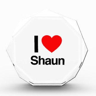 amo el shaun