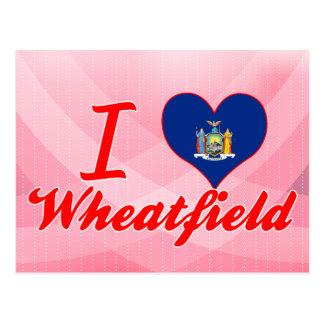 Amo el Wheatfield, Nueva York Tarjetas Postales