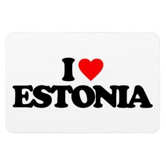 AMO ESTONIA IMAN RECTANGULAR