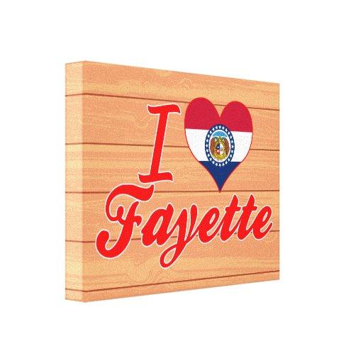 Amo Fayette, Missouri Lona Estirada Galerías
