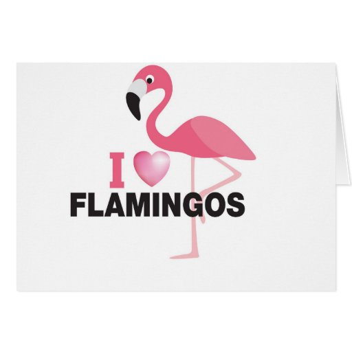 amo flamencos tarjeton