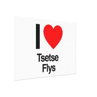 amo flys del tsetse lona estirada galerías