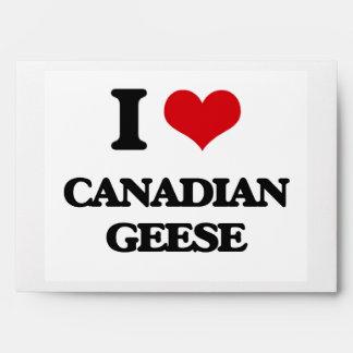 Amo gansos canadienses