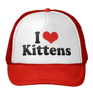 Amo gatitos gorro