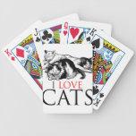 Amo gatos barajas