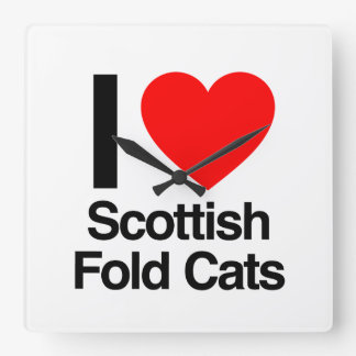 amo gatos del doblez del escocés reloj cuadrado