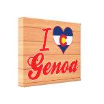 Amo Génova, Colorado Lona Estirada Galerías