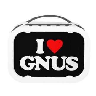 AMO GNUS