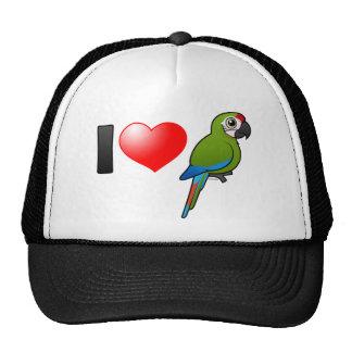 Amo grandes Macaws verdes Gorra