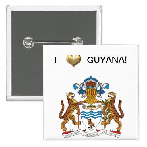 Amo Guyana Pin