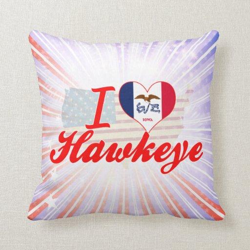 Amo Hawkeye, Iowa Almohada