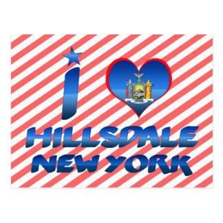 Amo Hillsdale, Nueva York Tarjeta Postal