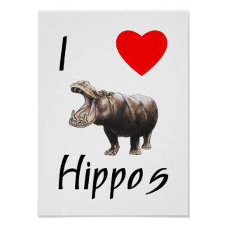 Amo hipopótamos (2) póster