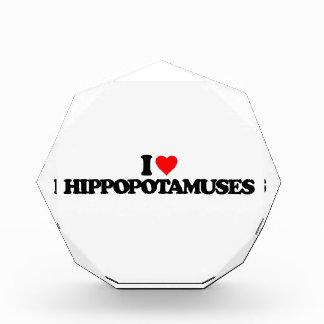 AMO HIPPOPOTAMUSES
