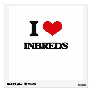 Amo Inbreds
