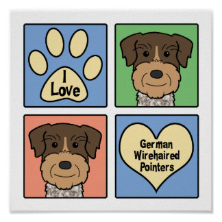 Amo indicadores Wirehaired alemanes Poster