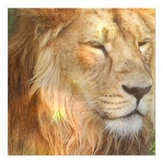 Amo invitaciones de los leones anuncio