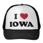 Amo Iowa Gorros Bordados
