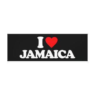 AMO JAMAICA LONA ESTIRADA GALERIAS