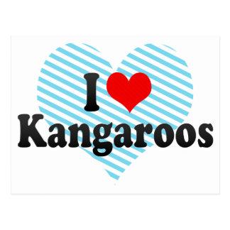 Amo KangaROOS Tarjeta Postal