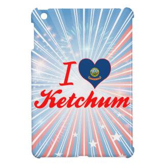 Amo Ketchum, Idaho