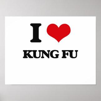 Amo Kung Fu Póster