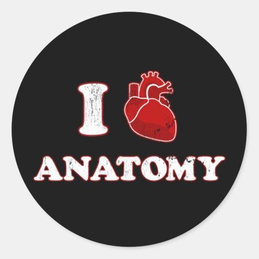 amo la anatomía etiqueta redonda