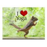 Amo la ardilla de la yoga tarjeta postal