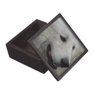 Amo la caja de los grandes Pirineos Cajas De Recuerdo De Calidad