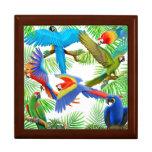 Amo la caja de regalo de los Macaws