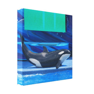 Amo la impresión de la lona de las orcas impresion en lona