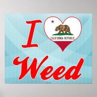 Amo la mala hierba California Posters