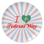 Amo la manera federal, Washington Plato De Cena