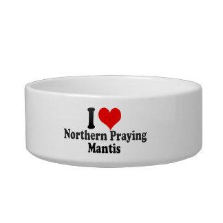 Amo la mantis religiosa septentrional tazones para comida para gato