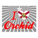 Amo la orquídea, la Florida Tarjeta Postal