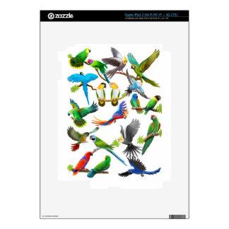 Amo la piel de Zazzle de los loros iPad 3 Pegatinas Skins