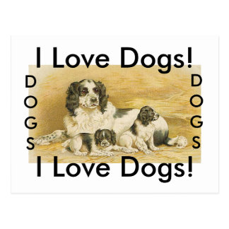 Amo la postal de los perros