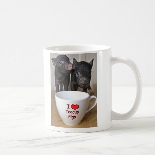 Amo la taza de los cerdos de la taza de té