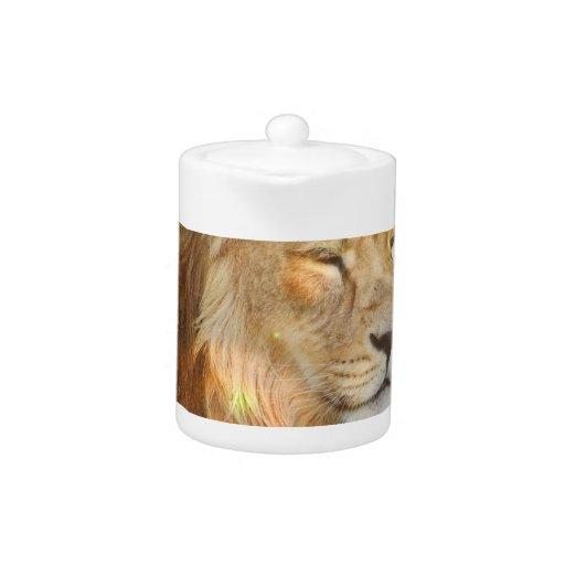 Amo la tetera de los leones