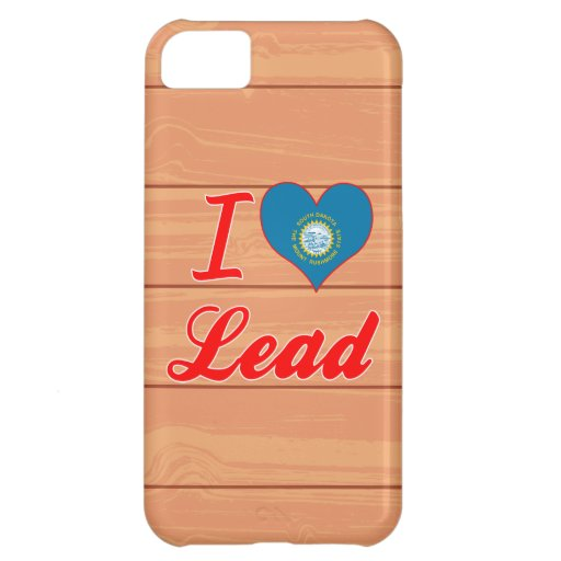 Amo la ventaja, Dakota del Sur Funda Para iPhone 5C