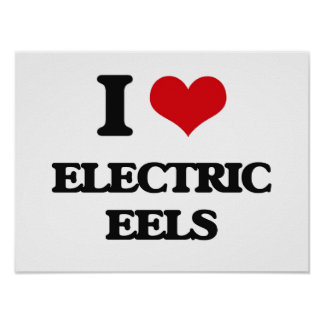 Amo las anguilas eléctricas póster