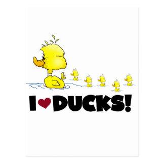 Amo las camisetas y los regalos de los patos tarjeta postal