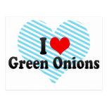 Amo las cebollas verdes tarjeta postal