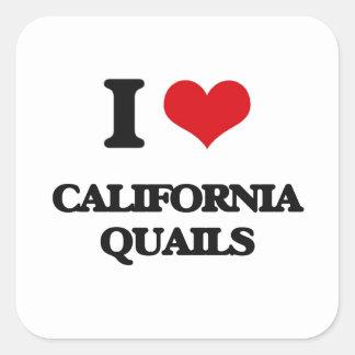 Amo las codornices de California Pegatina Cuadrada