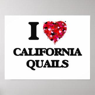 Amo las codornices de California Póster