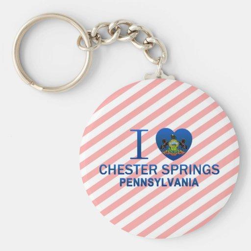 Amo las primaveras de Chester, PA Llavero